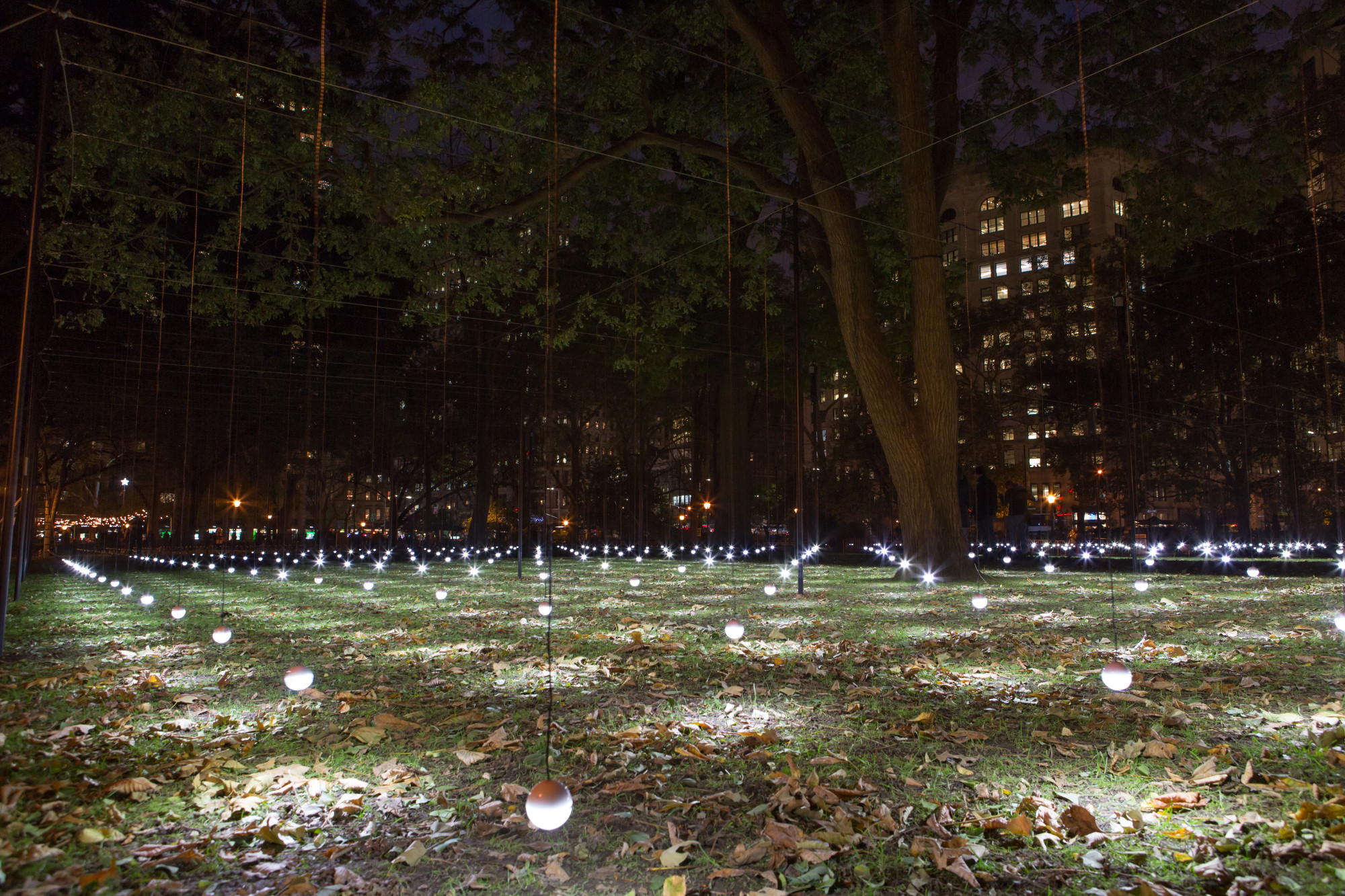 Lights hang over the frass in Madison Square Park