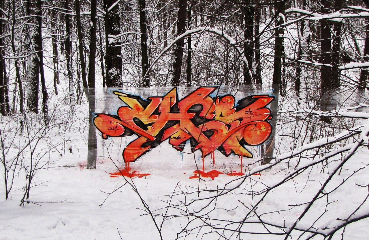 A Cellograffiti piece in the woods near Moscow.