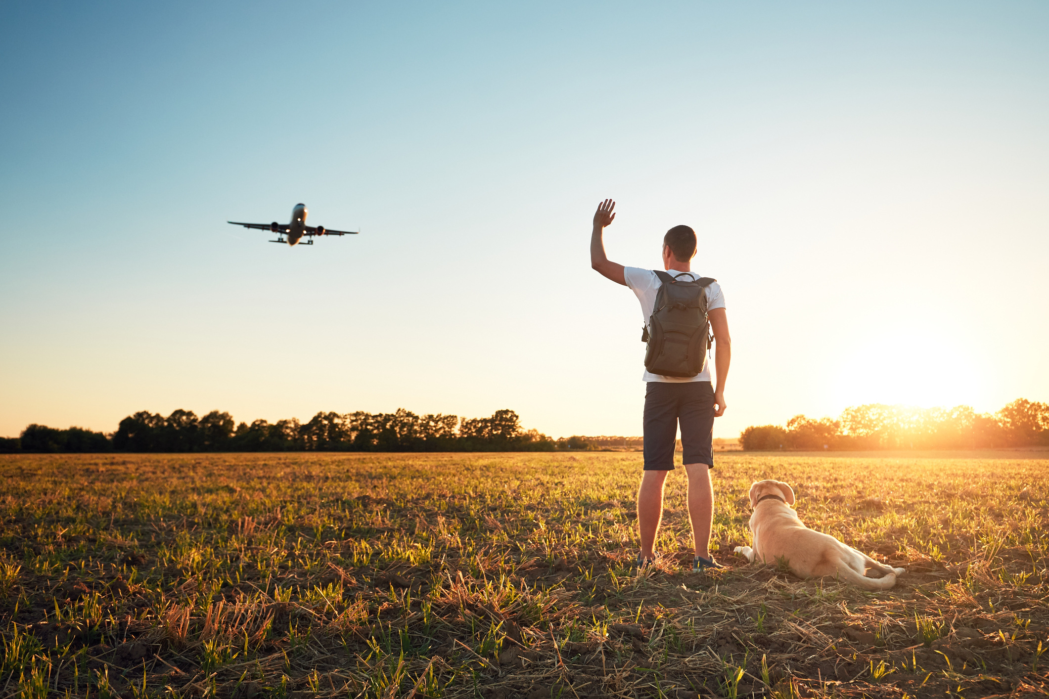 A man says goodbye to a plane with his dog.
