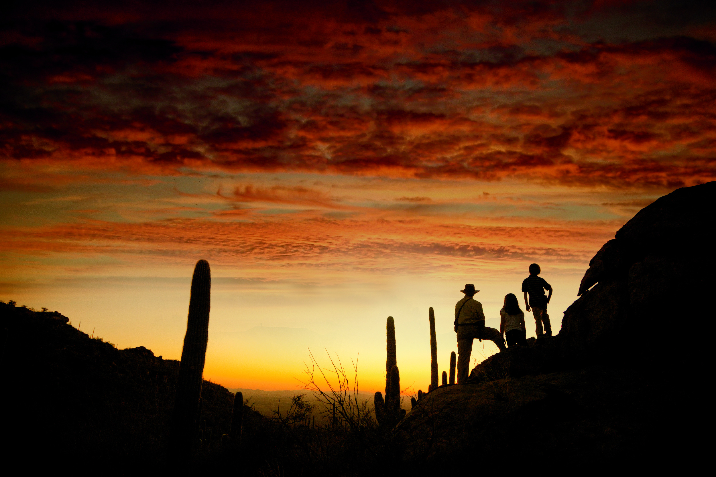 The Ritz-Carlton Dove Mountain in Arizona is surrounded by 20 miles of hiking and biking trails, which can be explored independently or on a guided excursion