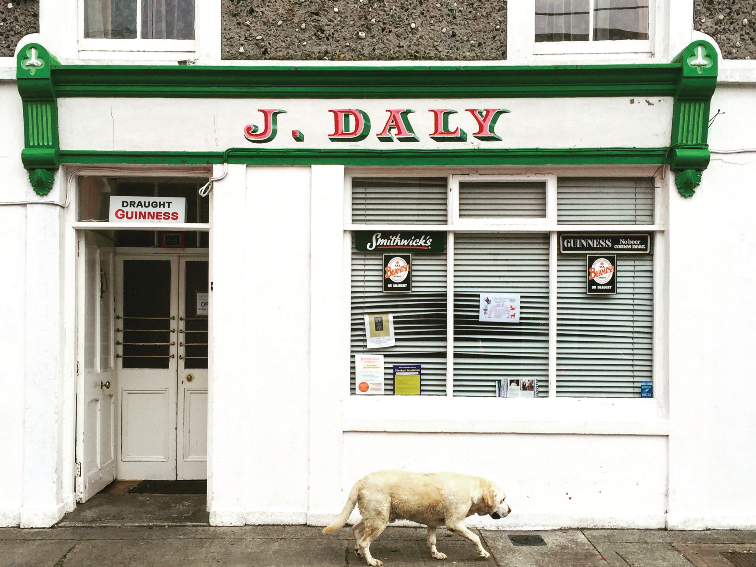 J.Daly's Bar in Ballydehob, County Cork.