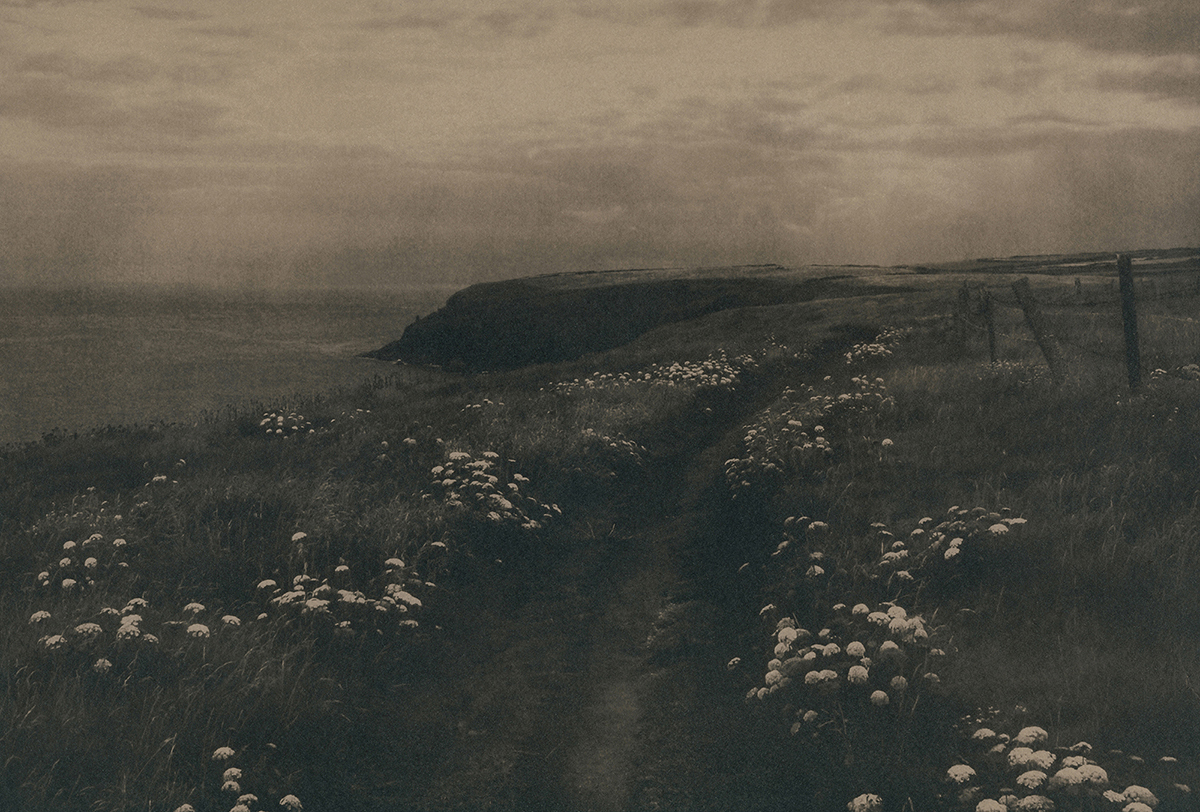 Tea toned cyanotype of the coastal path to Bishop's Cave in the Irish countryside.