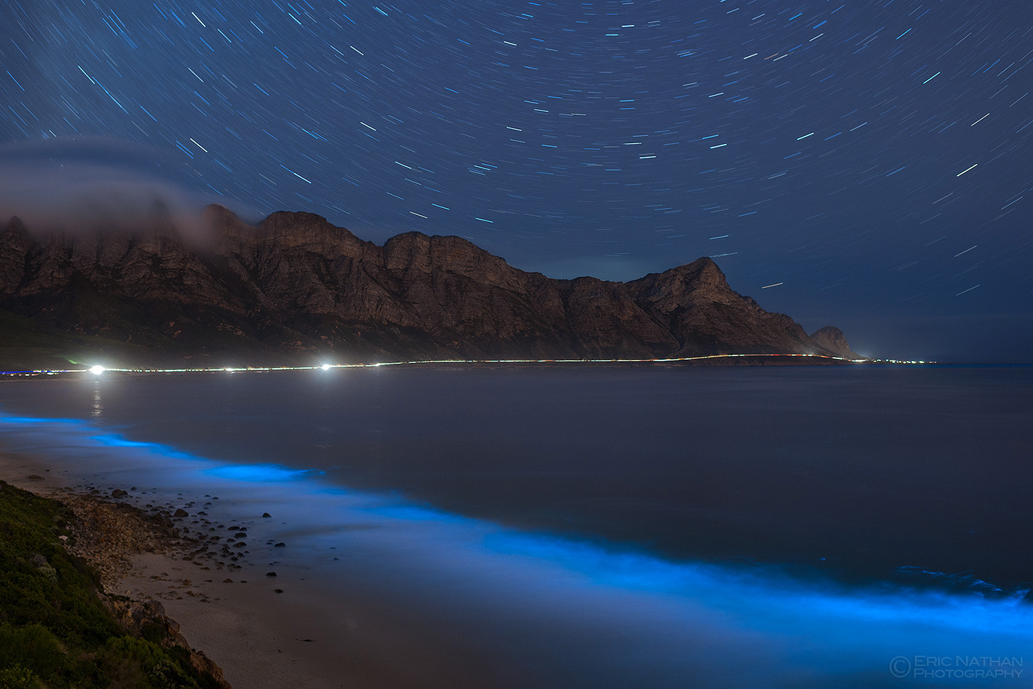Bioluminescence in Cape Town