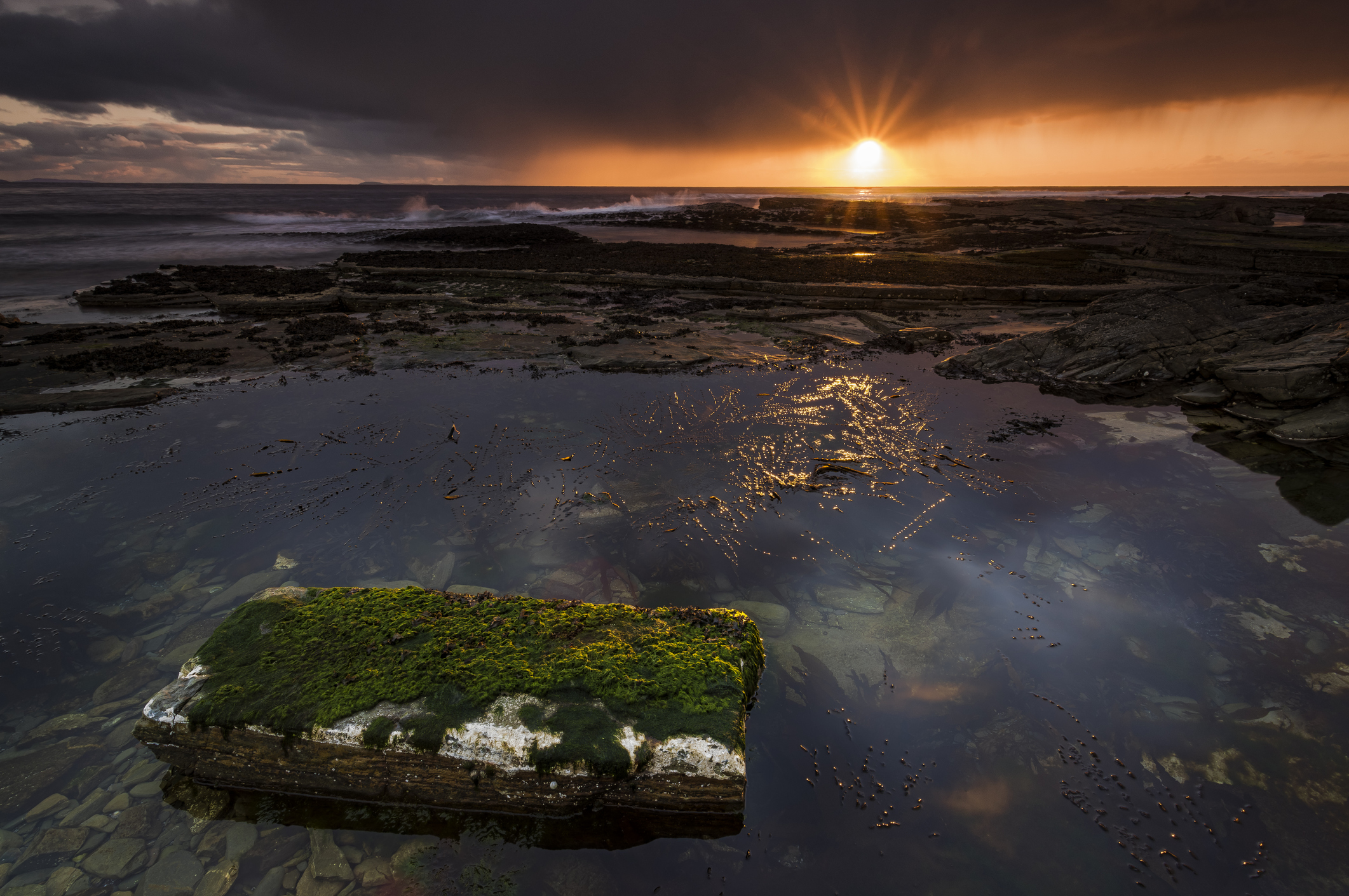 The rugged coastline of North Ronaldsay. in the Orkney Islands at sunset